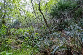 Photo 6: 8803 Canal Rd in : GI Pender Island Land for sale (Gulf Islands)  : MLS®# 874547