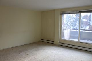 Photo 4: 404 903 19 Avenue SW in Calgary: Lower Mount Royal Apartment for sale : MLS®# A1094813