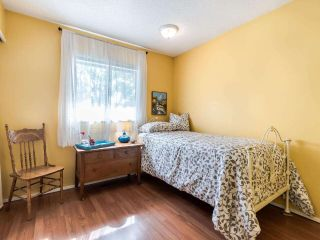 """Photo 16: 6774 197 Street in Langley: Willoughby Heights House for sale in """"Langley Meadows"""" : MLS®# R2583199"""