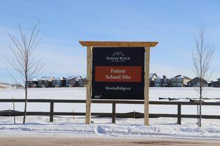 Photo 44: 1261 Peregrine Terrace in Edmonton: Zone 59 House for sale : MLS®# E4228982