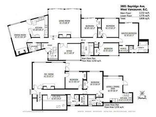 Photo 19: 3801 BAYRIDGE AV in West Vancouver: Bayridge House for sale : MLS®# V1023302