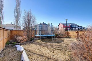 Photo 44: 277 Tuscany Ridge Heights NW in Calgary: Tuscany Detached for sale : MLS®# A1095708