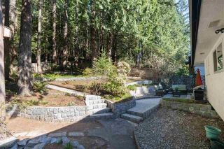 Photo 15: 2408 HYANNIS Drive in North Vancouver: Blueridge NV House for sale : MLS®# R2569474