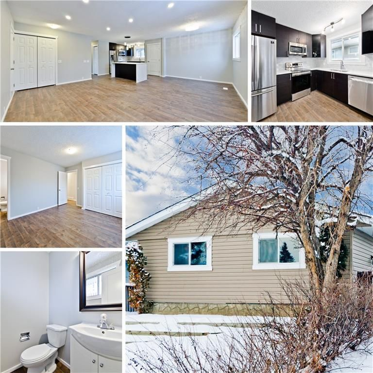 Main Photo: 100 DOVERVIEW Place SE in Calgary: Dover Detached for sale : MLS®# A1024220