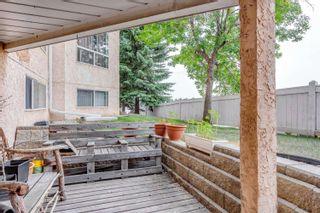 Photo 22: 129 15499 CASTLE DOWNS Road in Edmonton: Zone 27 Condo for sale : MLS®# E4258166