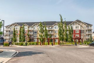 Main Photo: 5209 155 Skyview ranch Way NE in Calgary: Skyview Ranch Apartment for sale : MLS®# A1134193