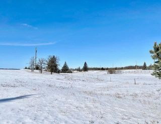 Photo 30: 13 Dane Drive in Carberry: R36 Residential for sale (R36 - Beautiful Plains)  : MLS®# 202105227