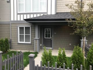 """Photo 17: 79 8050 204 Street in Langley: Willoughby Heights Townhouse for sale in """"ASHBURY + OAK"""" : MLS®# R2308442"""