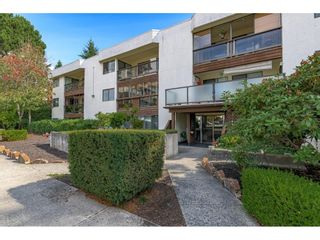 Photo 1: 206 1526 GEORGE STREET: White Rock Condo for sale (South Surrey White Rock)  : MLS®# R2618182