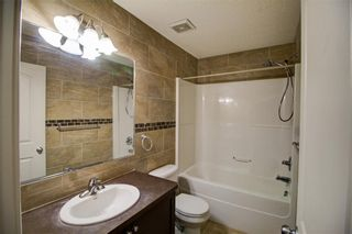Photo 23: 6 COPPERPOND Court SE in Calgary: Copperfield Detached for sale : MLS®# C4292928
