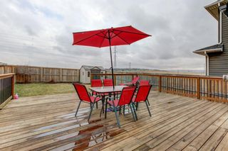 Photo 26: 53 EVANSDALE Landing NW in Calgary: Evanston Detached for sale : MLS®# A1104806