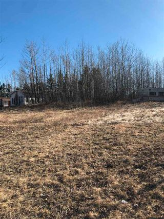 Photo 3: 333 58532 Rge Rd 113: Rural St. Paul County Rural Land/Vacant Lot for sale : MLS®# E4241303