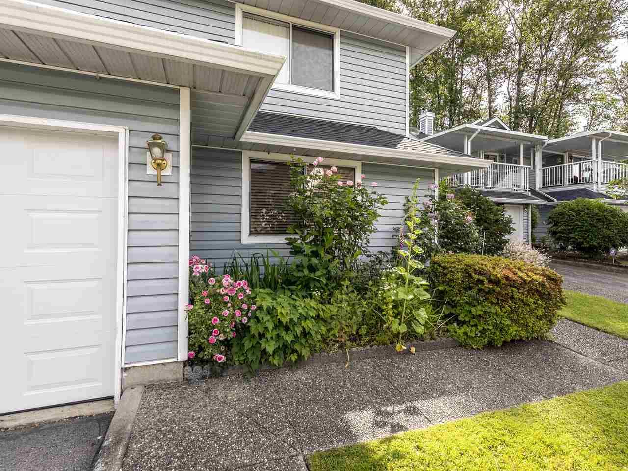 """Photo 4: Photos: 127 22555 116 Avenue in Maple Ridge: East Central Townhouse for sale in """"HILLSIDE"""" : MLS®# R2493046"""