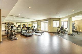 Photo 30: 225 2503 HANNA Crescent in Edmonton: Zone 14 Condo for sale : MLS®# E4245395