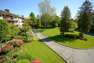 """Photo 17: 210 10180 RYAN Road in Richmond: South Arm Condo for sale in """"STORNOWAY"""" : MLS®# R2369325"""