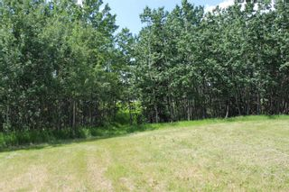 Photo 15: 25255 Bearspaw Place in Rural Rocky View County: Rural Rocky View MD Land for sale : MLS®# A1013795