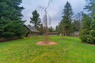 Photo 34: 25124 53 Avenue in Langley: Salmon River House for sale : MLS®# R2554709