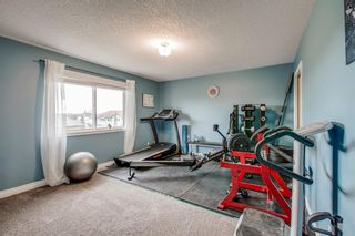 Photo 29: 234 Canoe Square SW: Airdrie Detached for sale : MLS®# A1043547