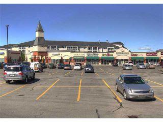 Photo 19: 122 260 Shawville Way SE in CALGARY: Shawnessy Condo for sale (Calgary)  : MLS®# C3628283