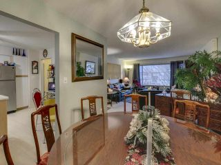 "Photo 14: 1048 SPRUCE Avenue in Port Coquitlam: Lincoln Park PQ House for sale in ""Lincoln Park"" : MLS®# R2522974"