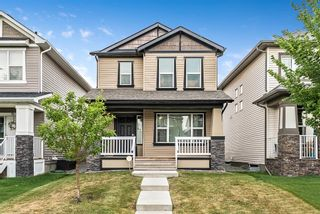 Main Photo: 79 Legacy Crescent SE in Calgary: Legacy Detached for sale : MLS®# A1128046
