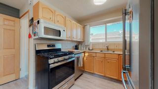 Photo 8: 220 HOMESTEAD Crescent in Edmonton: Zone 35 House for sale : MLS®# E4252303