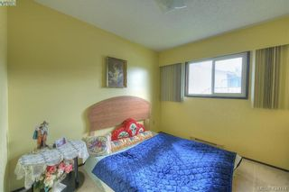 Photo 15: 4383 Majestic Dr in VICTORIA: SE Gordon Head House for sale (Saanich East)  : MLS®# 837692