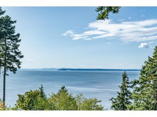 Photo 15: 2120 INDIAN FORT Drive in Surrey: Crescent Bch Ocean Pk. House for sale (South Surrey White Rock)  : MLS®# R2407285