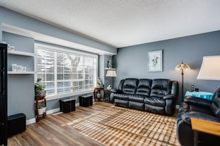 Photo 2: 100 Martinwood Road NE in Calgary: Martindale Detached for sale : MLS®# A1071596