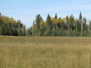 Photo 25: TWP Rd 310: Rural Mountain View County Land for sale : MLS®# C4292828