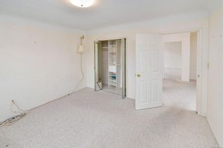 Photo 20: 1960 CARNARVON St in : SE Camosun House for sale (Saanich East)  : MLS®# 884485