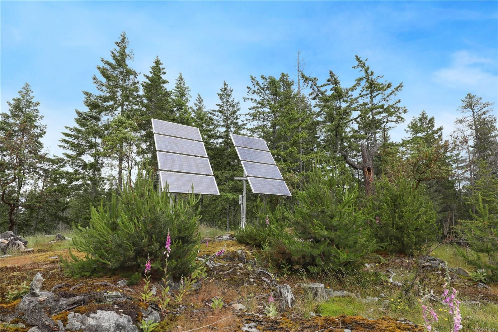 Photo 31: Photos: 979 Thunder Rd in : Isl Cortes Island House for sale (Islands)  : MLS®# 878691