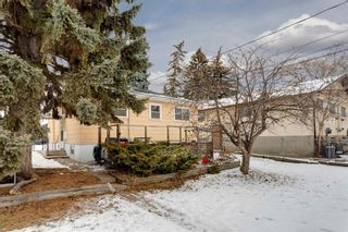 Photo 23: 515 20 Avenue NW in Calgary: Mount Pleasant Detached for sale : MLS®# A1050445