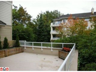 """Photo 9: 108 20125 55A Avenue in Langley: Langley City Condo for sale in """"BLACKBERRY LANE 2"""" : MLS®# F1200974"""