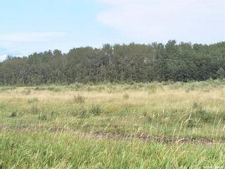 Photo 10: RM 486 5 Quarter Land in Moose Range: Farm for sale (Moose Range Rm No. 486)  : MLS®# SK867716