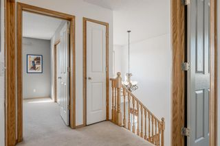 Photo 13: 53 Royal Birch Grove NW in Calgary: Royal Oak Detached for sale : MLS®# A1115762