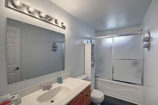 Photo 23: 40 649 Main Street N: Airdrie Mobile for sale : MLS®# A1153101