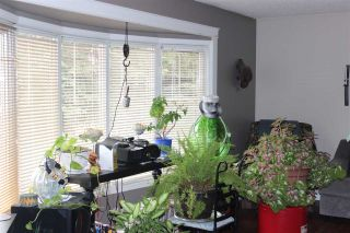 Photo 4: 8912 68 Street in Edmonton: Zone 18 House for sale : MLS®# E4235363