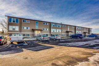 Photo 3: 205 101 Big Hill Way SE: Airdrie Apartment for sale : MLS®# A1053941