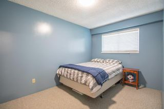 Photo 16: 20787 RIVER ROAD in Maple Ridge: Southwest Maple Ridge House for sale : MLS®# R2550739