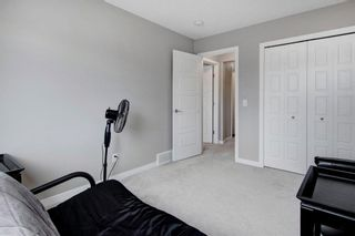 Photo 29: 408 Cornerstone Passage NE in Calgary: Cornerstone Detached for sale : MLS®# A1122046