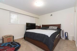 Photo 12: 4233 Thornhill Cres in VICTORIA: SE Lambrick Park House for sale (Saanich East)  : MLS®# 792090