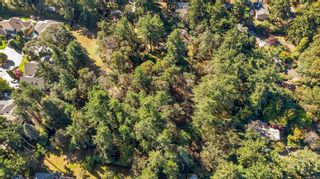Photo 3: 3912 Sheret Pl in Saanich: SE Ten Mile Point Land for sale (Saanich East)  : MLS®# 887525