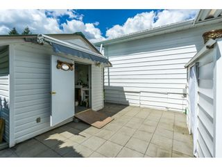 """Photo 19: 178 3665 244 Street in Langley: Otter District Manufactured Home for sale in """"LANGLEY GROVE ESTATES"""" : MLS®# R2272680"""