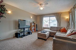 Photo 18: 63 MT Apex Green SE in Calgary: McKenzie Lake Detached for sale : MLS®# A1009034