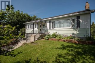 Photo 3: 298 Blackmarsh Road in St. John's: Other for sale : MLS®# 1237327