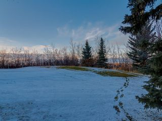 Photo 45: 31 RIDGE POINTE Drive: Heritage Pointe Detached for sale : MLS®# A1048814