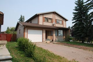 Main Photo: 3932 Whitehorn Drive NE in Calgary: Whitehorn Detached for sale : MLS®# A1134771