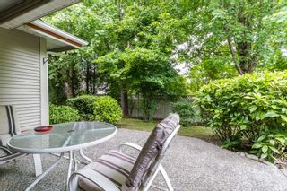 Photo 14: 31 12071 232B Street in Maple Ridge: East Central Townhouse for sale : MLS®# R2070540