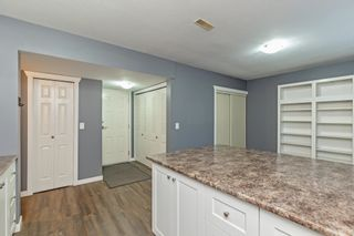 Photo 26: 30441 NIKULA Avenue in Mission: Stave Falls House for sale : MLS®# R2615083